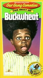 The Best of Buckwheat - Four shorts featuring Buckwheat!